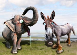 The Elephant and the Donkey in the Room by Leigh Pujado-Key West BarTab